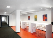 zehnder-plafonds-2013